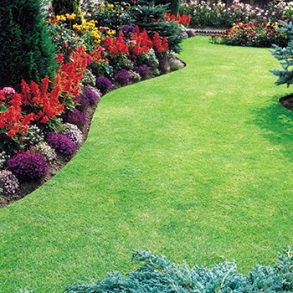 View All Lawn Care