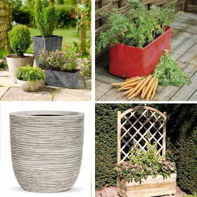 All Planters and Containers