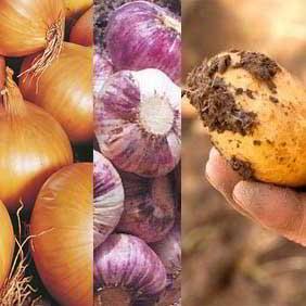 Potatoes Onions Garlic