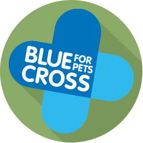Gift Ideas Supporting Blue Cross