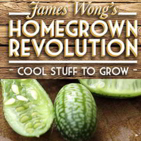 James Wong Homegrown Revolution Plants