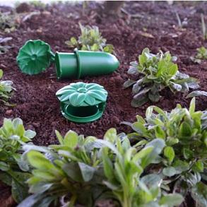 All Garden Pest Control