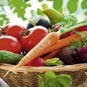 Popular Vegetable Plants
