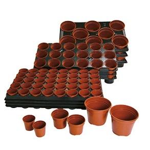 Plug Plant Growing Essentials