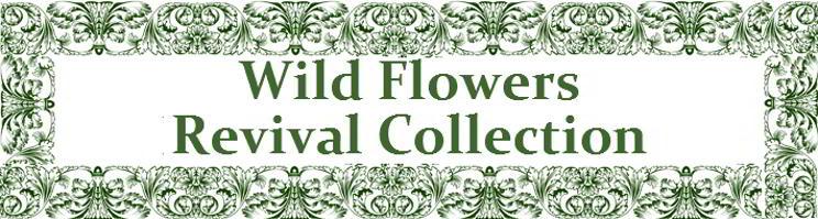 Wild Flower Revival