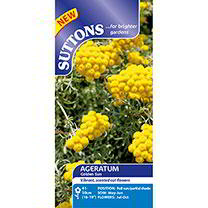 Ageratum Seeds - Golden Sun