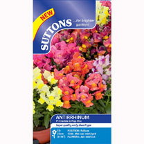 Antirrhinum Seeds - F1 Crackle & Pop Mix