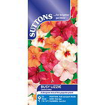 Impatiens Seeds - Cancun Mix