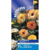 Calendula Seeds - Princess Mix