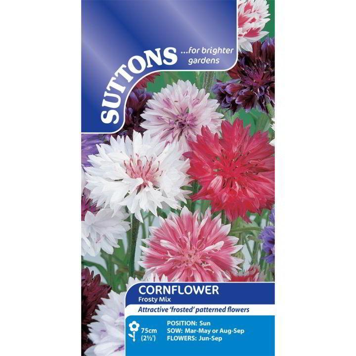 Cornflower Seeds - Frosty Mix