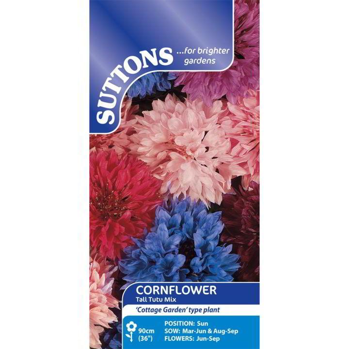 Cornflower Seeds - Tall Tutu Mix