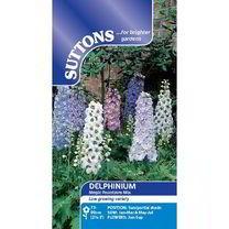 Delphinium Seeds - Magic Fountains Mix