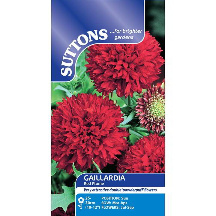 Gaillardia Seeds - Red Plume