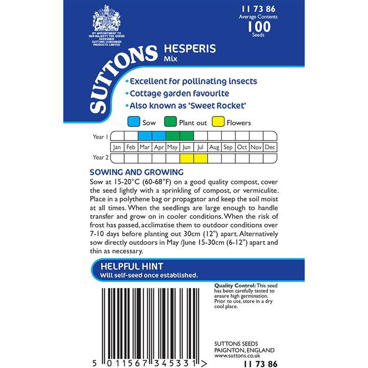 Hesperis Seeds - Mix