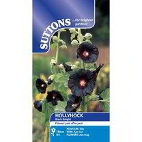 Hollyhock Seeds - Black Knight