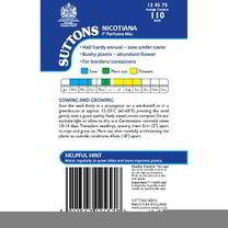 Nicotiana Seeds - F1 Perfume Mix