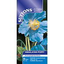 Himalayan Poppy Seeds - Lingholm