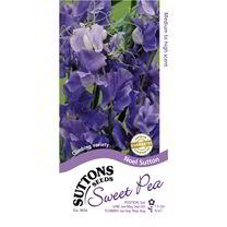 Sweet Pea Seeds - Noel Sutton