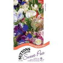 Sweet Pea Seeds - True Fragrance