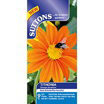 Tithonia Seeds - Orange (Mexican Sunflower)