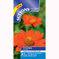 Tithonia Seeds - Red Torch