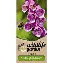 Wild Foxglove Seeds