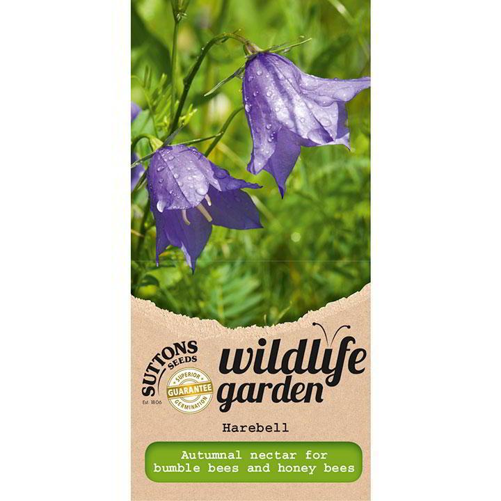Wildlife Garden Seeds - Harebell