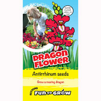 Antirrhinum Seeds - Dragon Flower (Magic Carpet Mix)