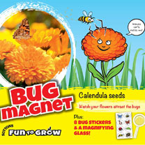Your Calendula flowers will be a real magnet for butterflies, bees and other insects as they visit the blooms in search of pollen and nectar. See if y