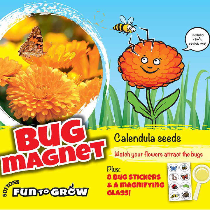 Calendula Seeds - Bug Magnet (Daisy Mix)