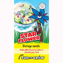 The Star flower produces bright blue flowers in large numbers during the summer months. Plants produce grey-green hairy leaves which can be used to fl