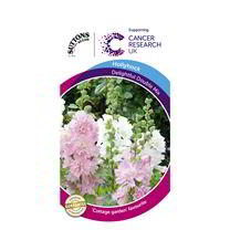 Hollyhock Seeds - Delightful Double Mix