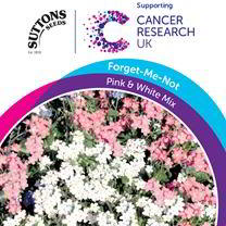 Myosotis Seeds - Pink & White Mix