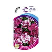 Petunia Seeds - Double Raspberry Swirl