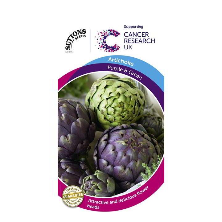 Artichoke Seeds - Purple & Green