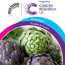 Artichoke Seeds - Purple & Green