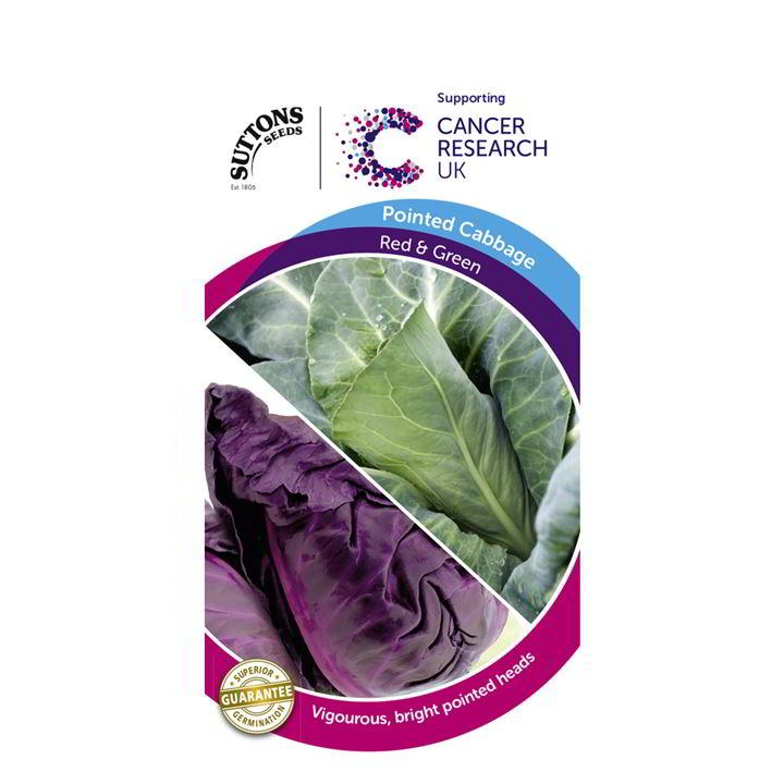 Cabbage Pointed Seeds - F1 Red & F1 Green