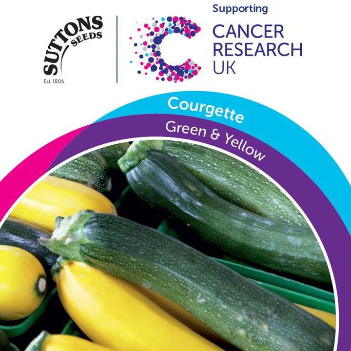 Courgette Seeds - Nano Verde & Golden Zucchini