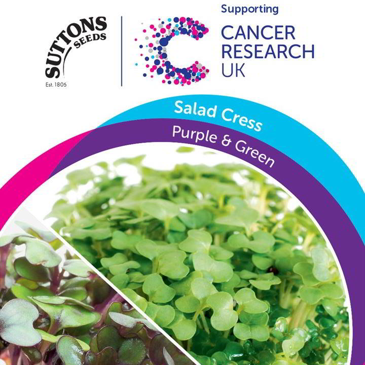 Cress Seeds - Purple & Green