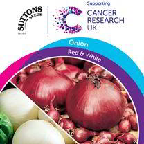 Onion Seeds - Red & White