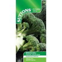 Broccoli Seeds - Autumn Spear
