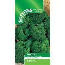 Broccoli Seeds - F1 Green Magic