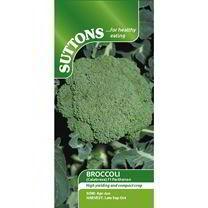 Broccoli Seeds - F1 Parthenon