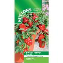 Pepper Sweet Seeds - F1 Redskin