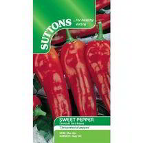 Pepper Sweet Seeds - Corno di toro rosso