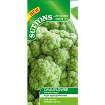 Cauliflower Seeds - Macerata Green
