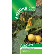 Courgette Seeds - F1 One Ball