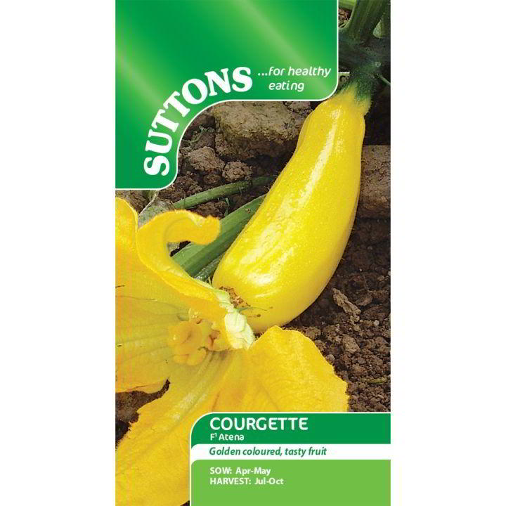 Courgette Seeds - F1 Atena