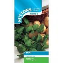 Herb Seed - Mint