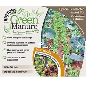 Green Manure Seeds - Intercrop Mix